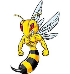 Cartoon of angry bee mascot isolated vector image