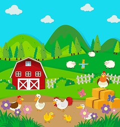 Chickens and ducks on the farm vector image