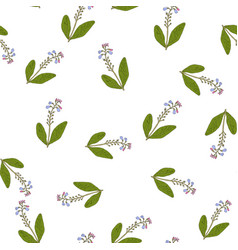 comfrey seamless pattern vector image