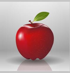 fresh nature apple fruit red food organic vector image