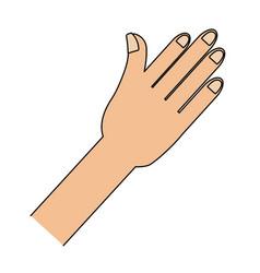 human hand cartoon vector image