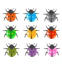 ladybug insect glossy icon set vector image vector image