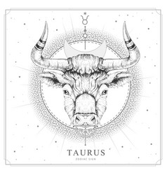 Magic witchcraft card with taurus zodiac sign vector