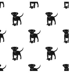 Pet puppy dog with a ball petdog care single vector
