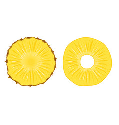 pineapple slice fruit vector image