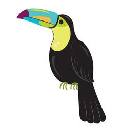 rainbow toucan bird - ramphastos sulfuratus vector image