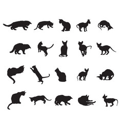 set of cats silhouettes-3 vector image