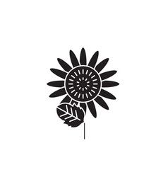sunflower black concept icon sunflower vector image