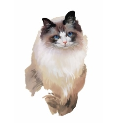 Watercolor portrait of cat vector