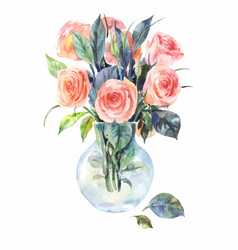 Watercolor roses in a glass vase isolated on a vector