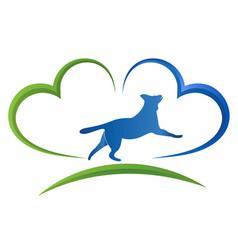pet insurance vector image