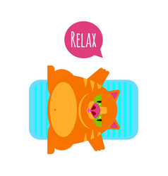 fat funny red cat relax vector image