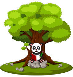 panda reading book and sitting on the stone vector image