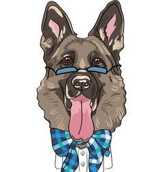 hipster dog German shepherd breed vector image