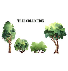 A collection of handmade trees watercolor vector