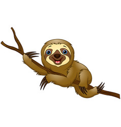 cartoon sloth on a tree branch vector image