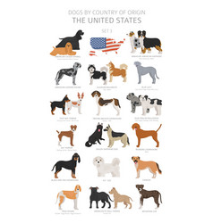 dogs country origin dog breeds from the vector image