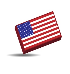The American flag vector image