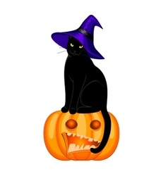 black cat isolated vector image vector image