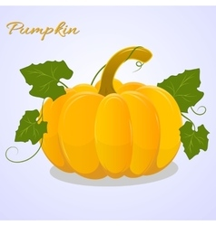 Bright pumpkin with leaves on blue background vector image vector image
