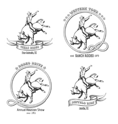 Rodeo Emblem Set vector image