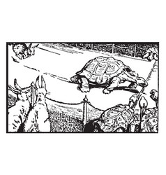 Aesops fables the hare and the tortoise vintage vector