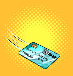 bank card flies credit and debit vector image