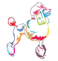 Colorful decorative standing portrait of poodle vector