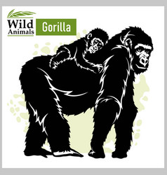 Gorilla and bagorilla in realistic style on a vector