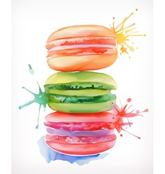 Macarons watercolor painting isolated on a white vector image