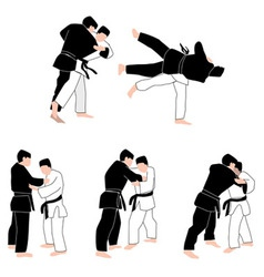 People Judo vector image