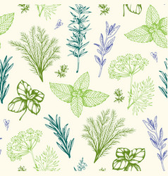 Vintage pattern with provencal herbs vector