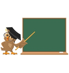 Owl teacher holding pointer at blackboard vector image