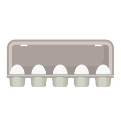egg box with white fresh chicken eggs vector image