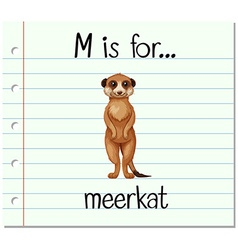 Flashcard letter M is for meerkat vector