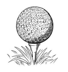 Hand drawing golf ball on tee vector
