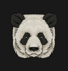 Head of panda bear face of wild animal hand drawn vector