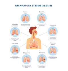 Human respiratory system diseases informative vector