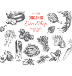 Organic farm shop sketch vegetables vector