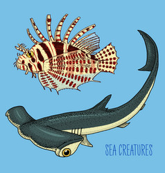 sea creature red lionfish and great hammerhead vector image