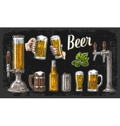 Two hands holding beer glasses mug and tap class vector