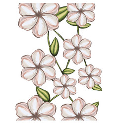 watercolor background of white malva flower with vector image