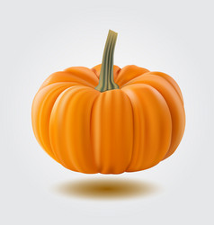 pumpkin isolated on white realistic vector image vector image