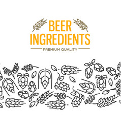 beer ingredients design card vector image