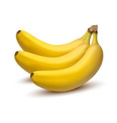 3d realistic bunch bananas vector