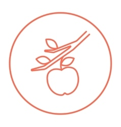 Apple harvest line icon vector
