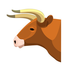 bull head realistic icon profile view on brown vector image