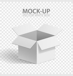 Mock-up box vector