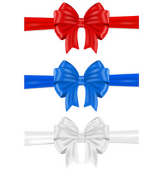 red blue and white ribbon bows vector image