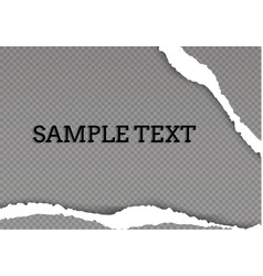 seamless ripped paper and transparent background vector image